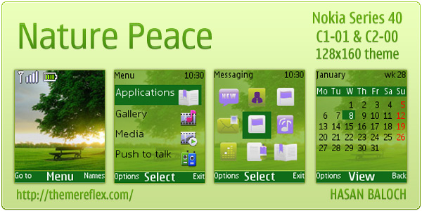 Nature Nokia C1-01 theme