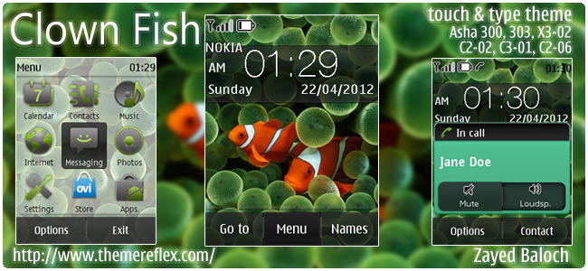 Clown Fish theme for Nokia Asha 300/303, X3-02, C2-06, Touch & Type