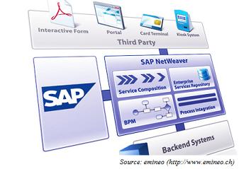 SAP NetWeaver BI Accelerator – ThemeReflex