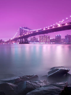 City-of-Lights-240x320-Wallpaper